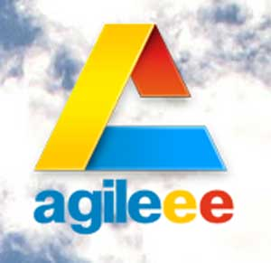 Agileee_Conferecence2011